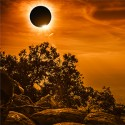 Eclipse tips for employers